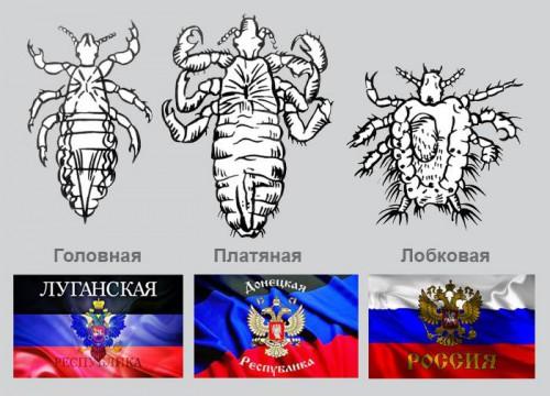 После третьего перемирия рашисты 750 раз атаковали украинских военных