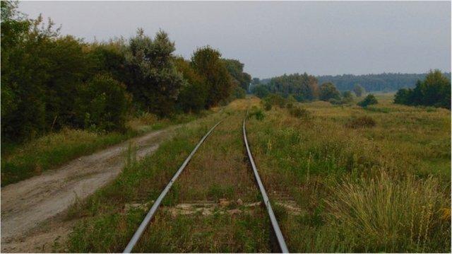 Воры на Одесской железной дороге: мародёр Януковича Илья Левицкий продолжает грабить украинский бюджет