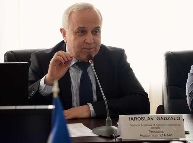 Земли НААНУ приносят ее президенту Ярославу Гадзало 120 миллионов долларов ежегодно