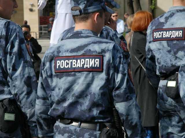 В Новгородской области житель Петербурга угрожал инспекторам ДПС охотничьим ружьем